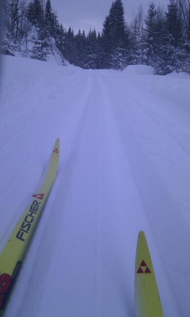 Nykjørte skispor ved Ausete